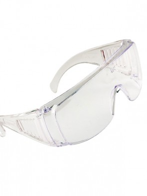 Portwest Visitor Safety Spectacles